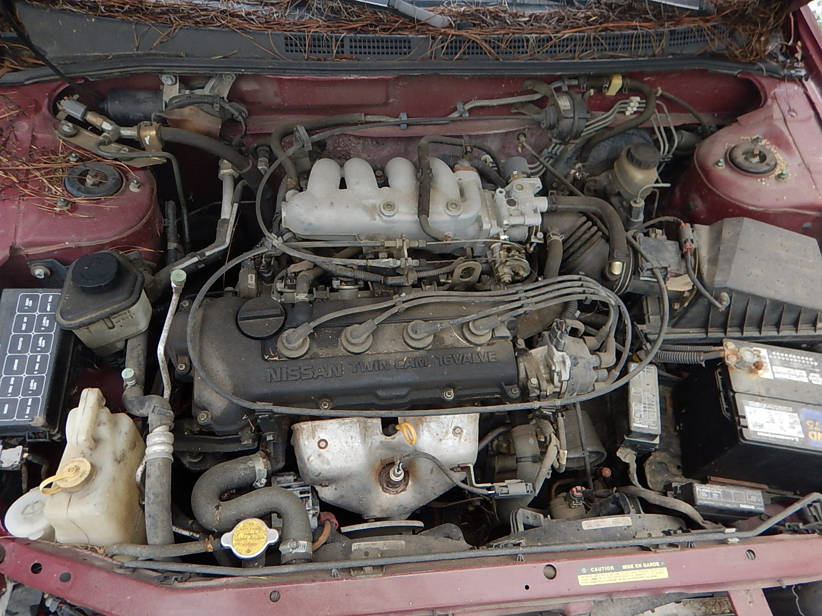 1995 Nissan Sentra Totaled – Appraisal Engine Inc